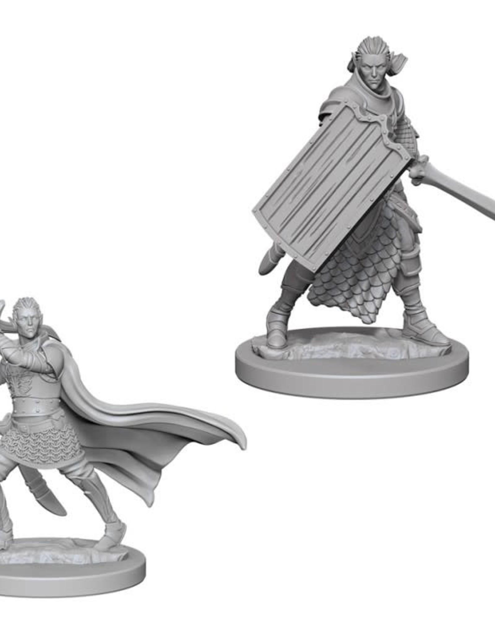 Pathfinder Mini's: Elf Male Paladin