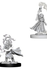 Pathfinder Mini's: Gnome Female Sorcerous
