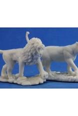 Bones Lions (2)