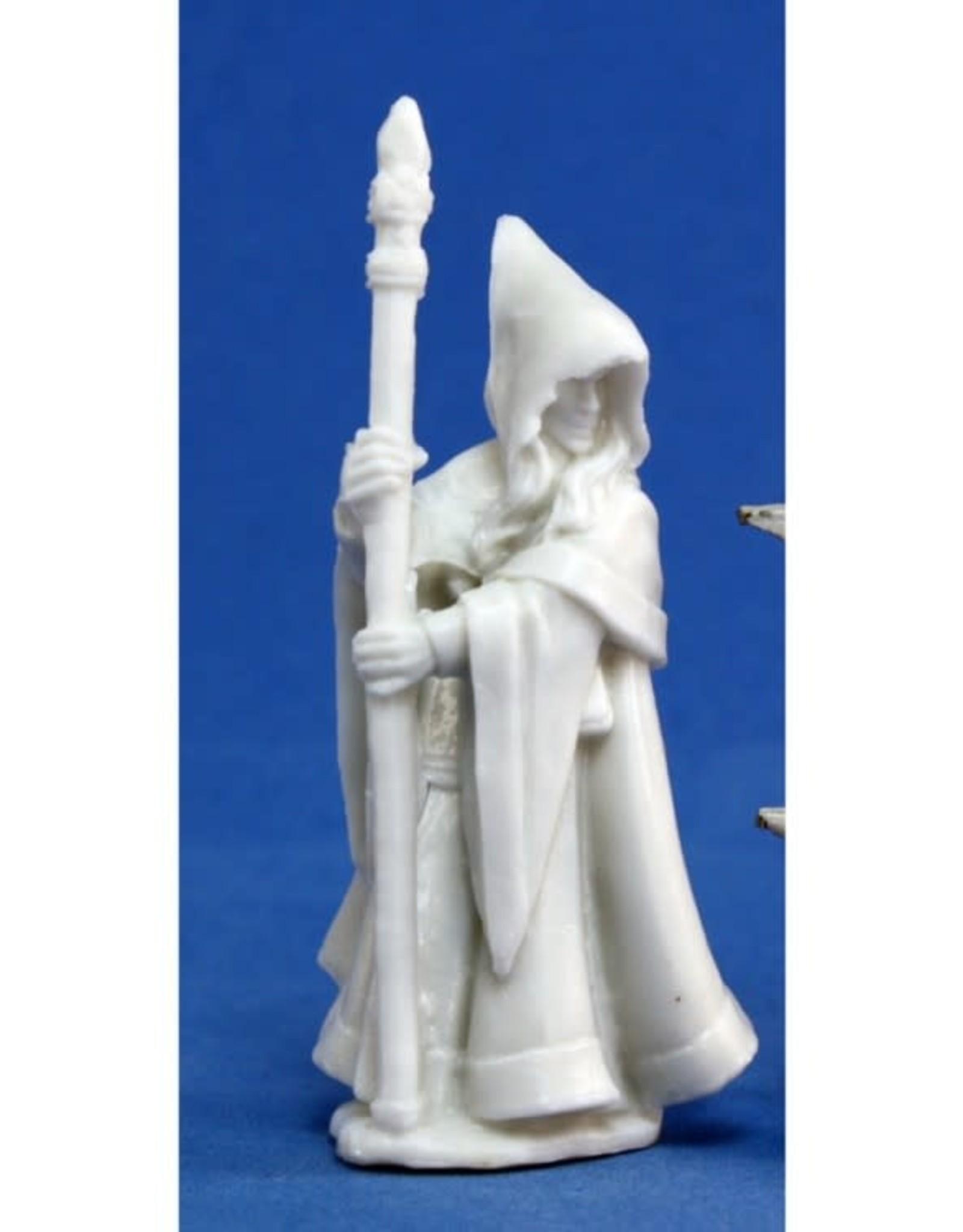Bones Anirion, Wood Elf Wizard