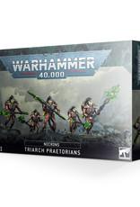 Warhammer 40K Necron Triarch Praetorians/Lychguard