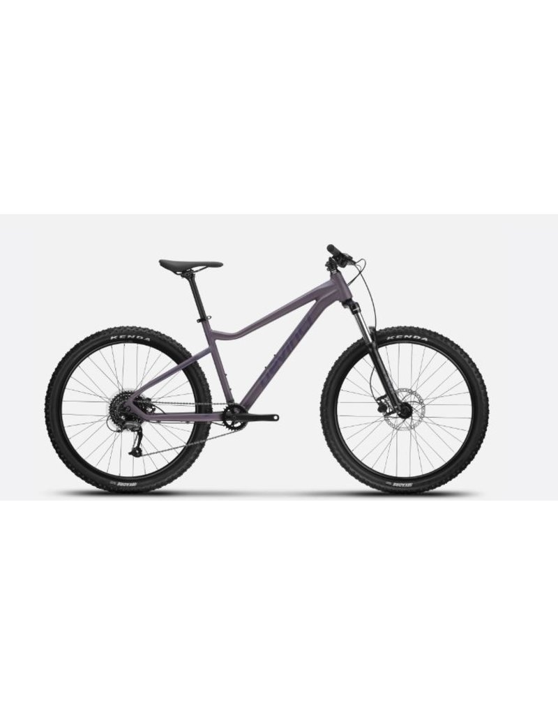 Devinci Blackbird Altus 9s SM Purple Ghost 2021