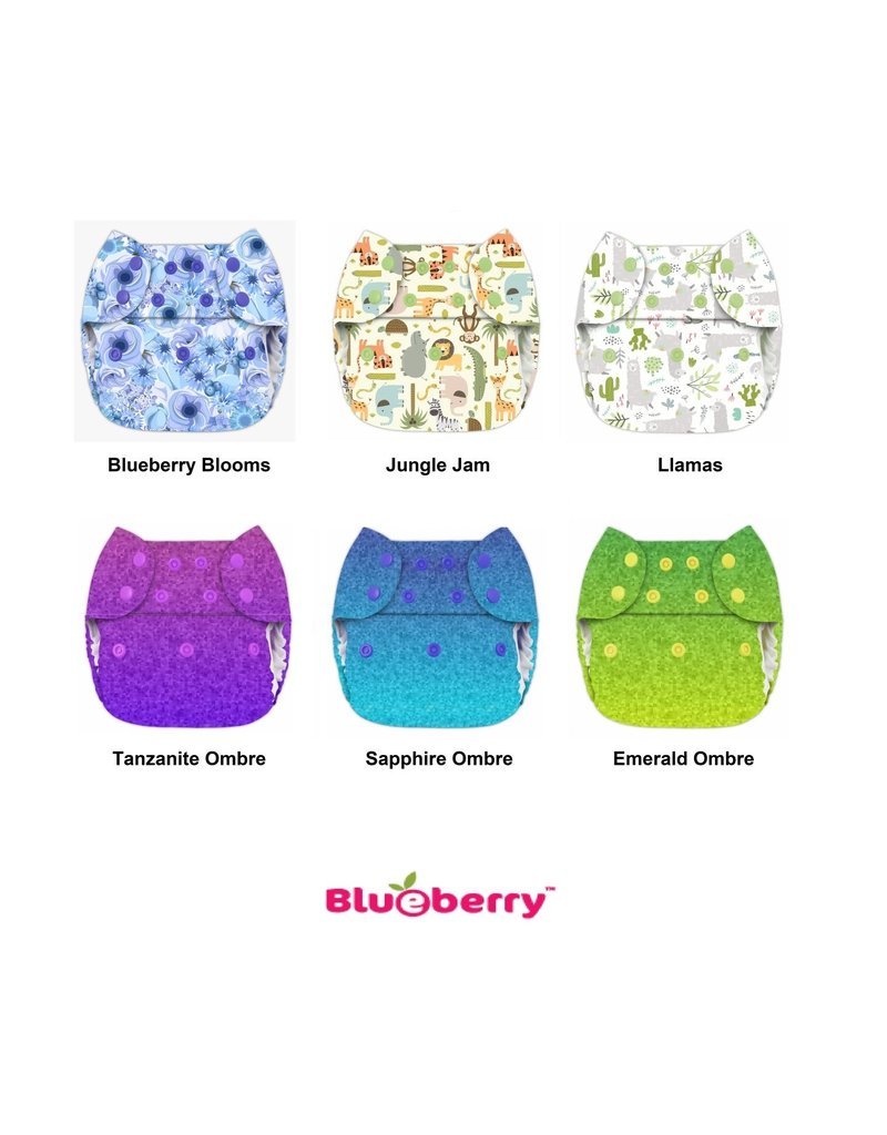 Blueberry Blueberry Org Simplex NB AIO LE