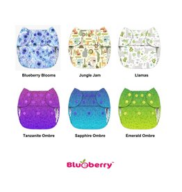 Blueberry Blueberry Org Simplex w/Fleece OS AIO LE