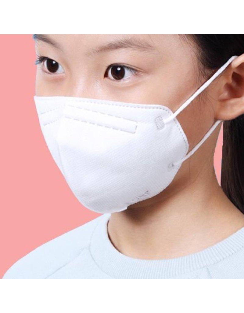 Air Queen Air Queen Nanofiber Filter Face Masks