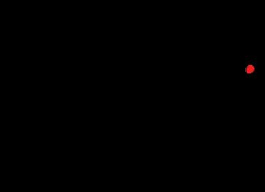 Luv Bug Co