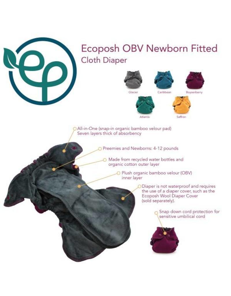 Eco•Posh Rumparooz EcoPosh OBV NB Fitted