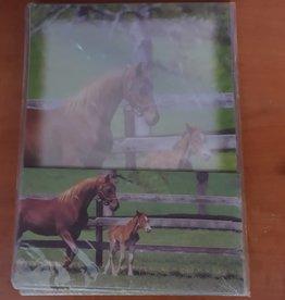 Horse Picture Letter/Envelope Set