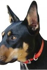 Dog Collar Ruby 55cm