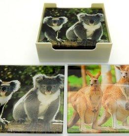 Coasters - Koala and Kangaroo
