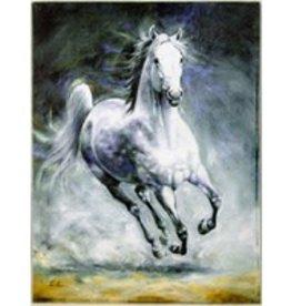 Storm's Coming - Canvas Art