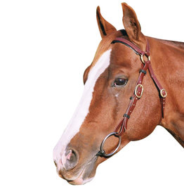 Barcoo Bridle - Full - Brown