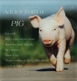 Plaque - Advice from a Pig