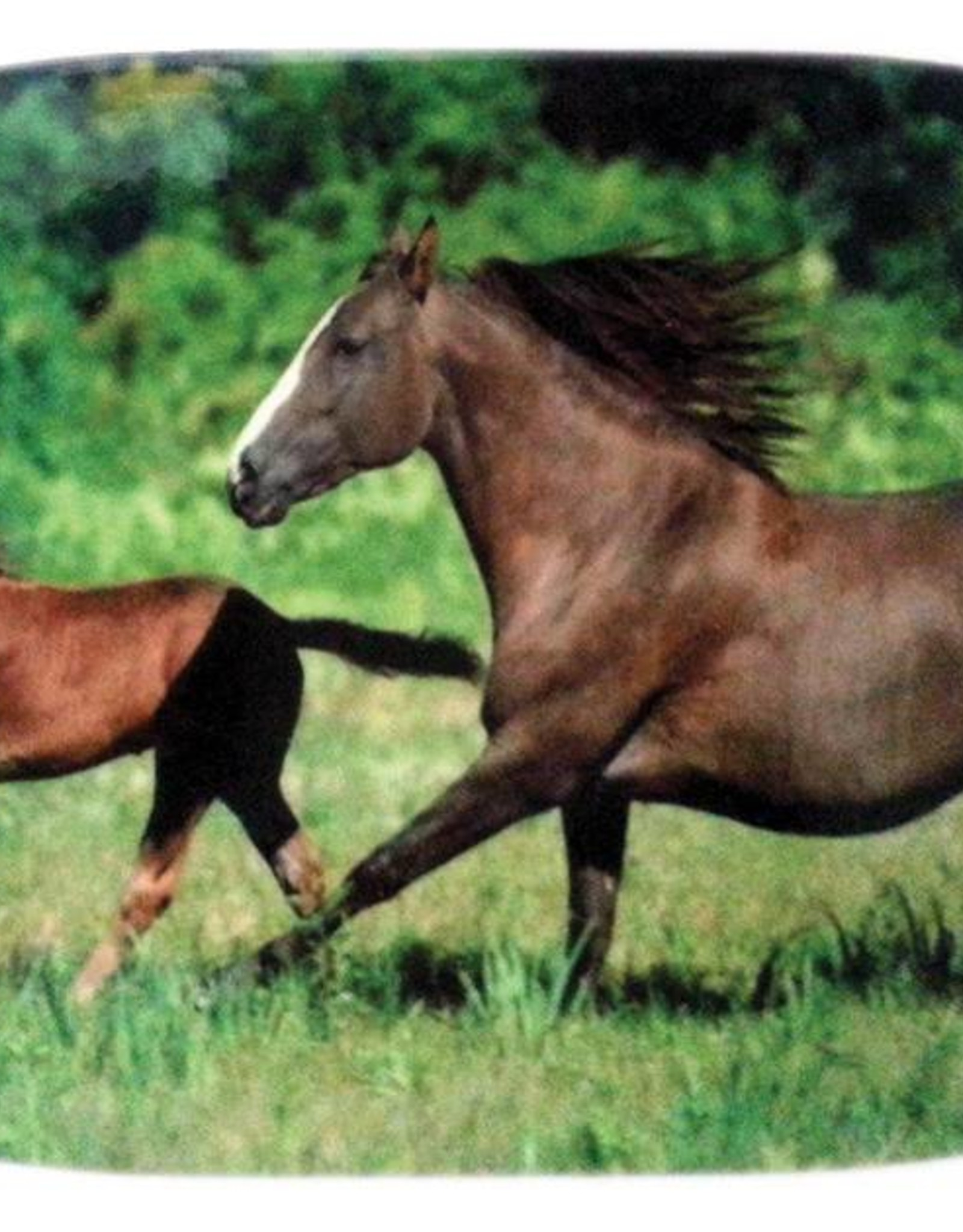 Ceramic Pot Holder - Foal & Mare 14cm x 22cm