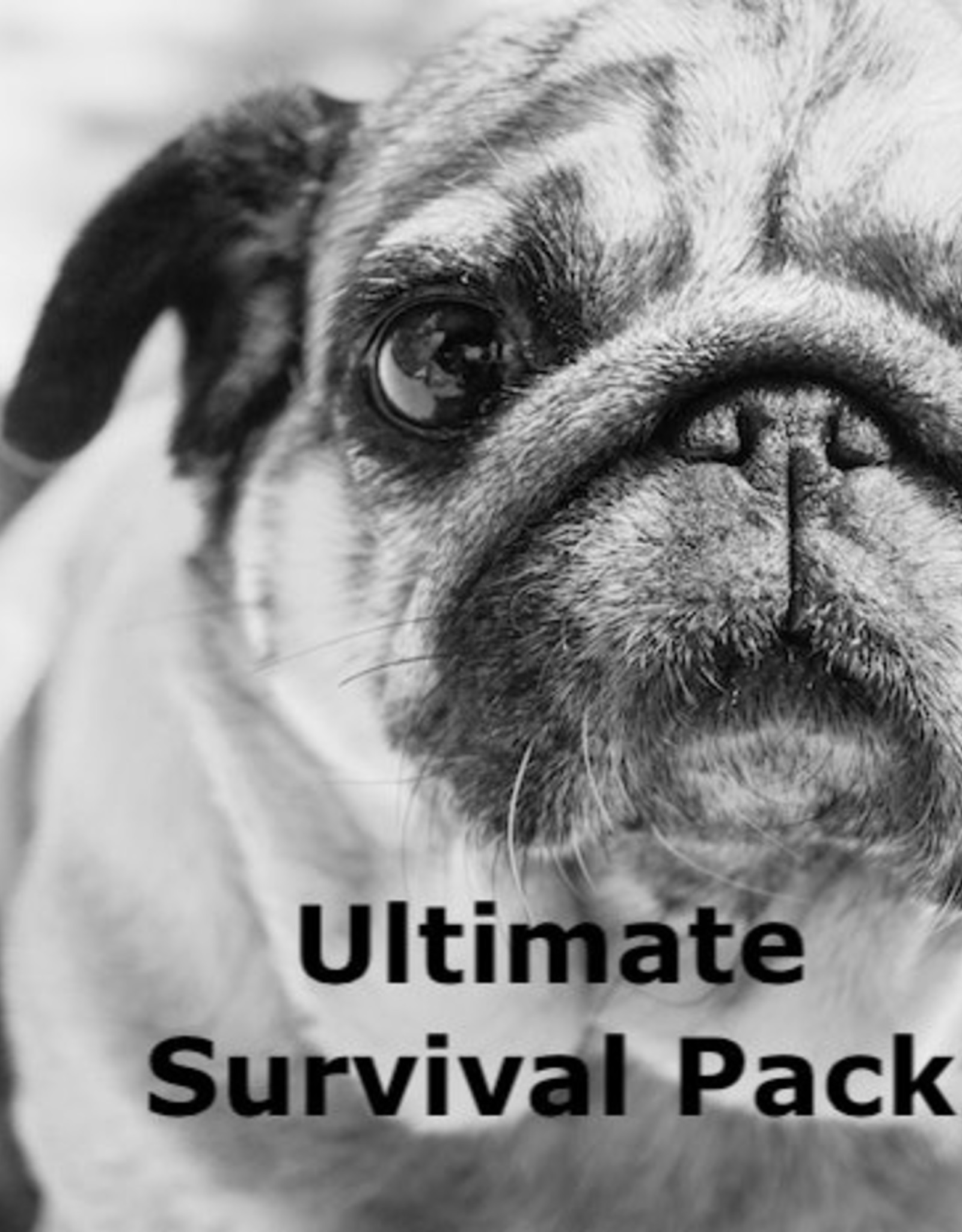 Ultimate Survival Pack - Small Dog