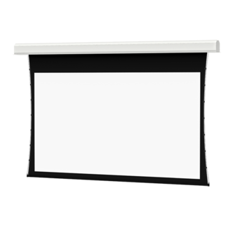 Da-Lite Da-Lite 70240 Advantage Deluxe Electrol Screen 14.5'x9'