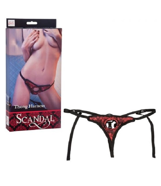 CalExotics Scandal Thong Harness