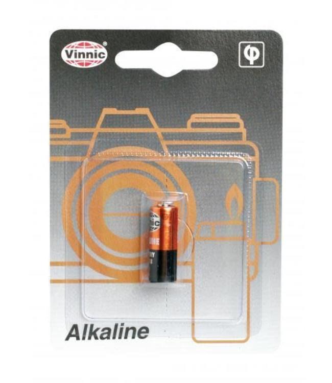 Vinnic 12 Volt Battery
