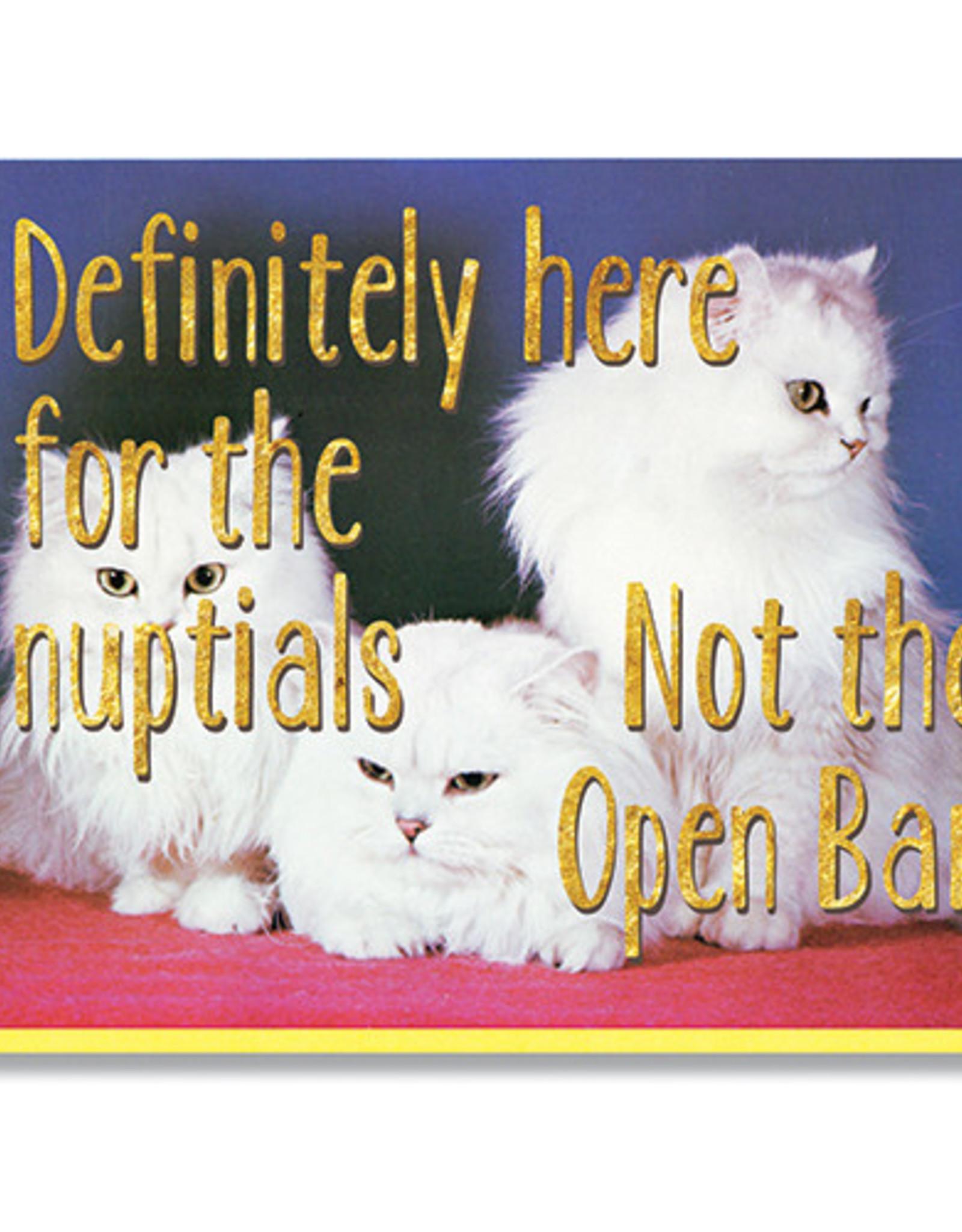 SMITTEN KITTEN NOT HERE FOR THE OPEN BAR