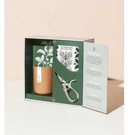 MODERN SPROUT MODERN SPROUT HARVEST GIFT SET