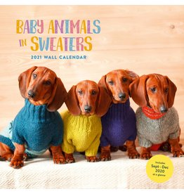 HACHETTE BABY ANIMALS IN SWEATERS 2021 WALL CALENDER