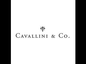 CAVALLINI PAPERS