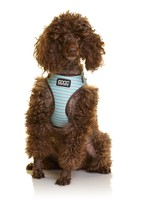 DOOG INC DOOG 'NEOFLEX' SOFT HARNESS - SCOOBY L
