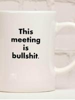 MERIWETHER MERIWETHER THIS MEETING IS BULLSHIT MUG