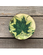 Columbine Home Simple Leaves, Green Grape Candle & Matches Set