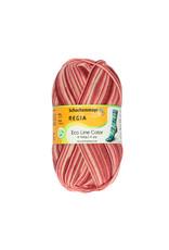 Regia Regia Eco Line Color 4-ply