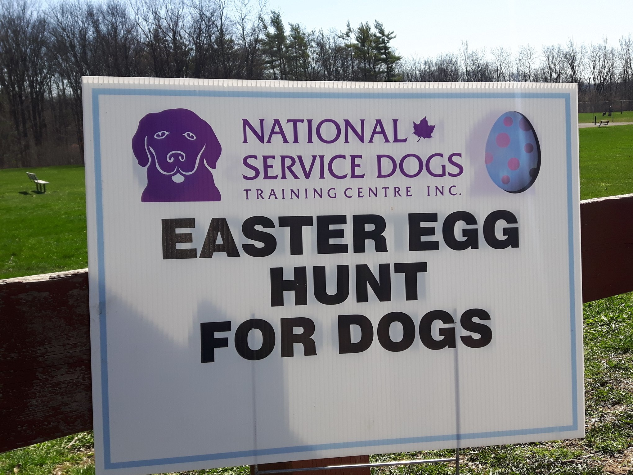 Don't miss the Easter Egg Hunt for Dogs!