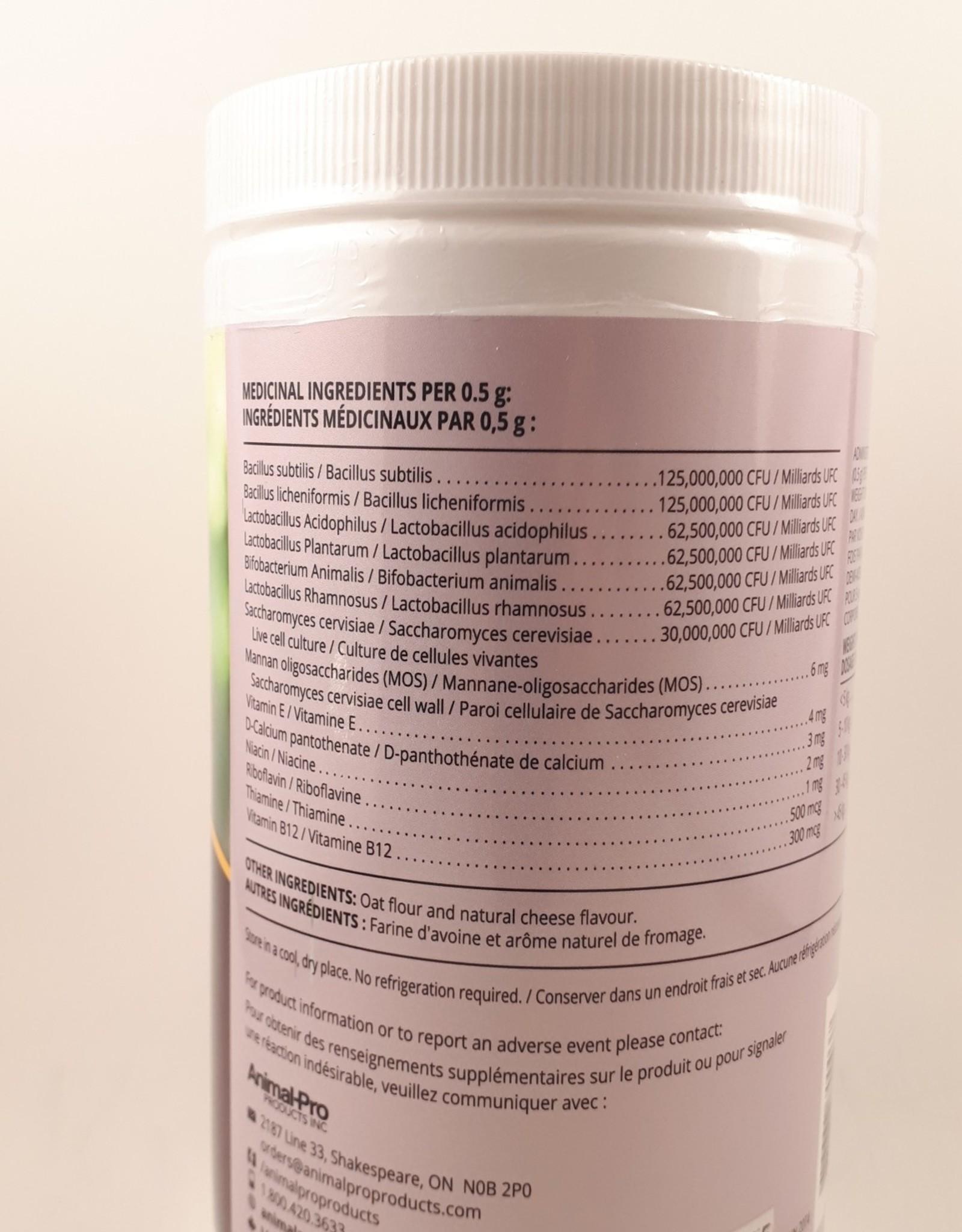Companions Choice Prebiotic & Probiotic  600g