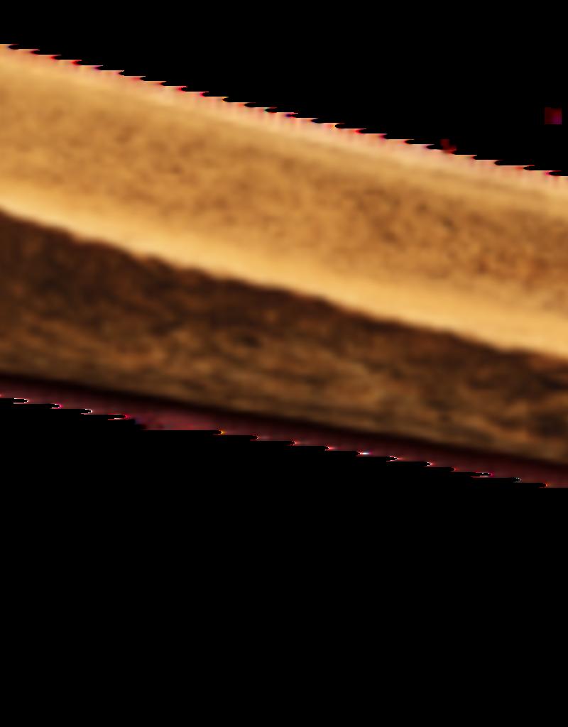Dentler Dentler Split Antler Smoked Maple Ham Dog Chew X-Large