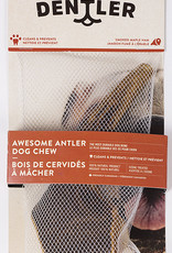 Dentler Dentler Whole Antler Smoked Maple Ham Dog Chew XX-Large