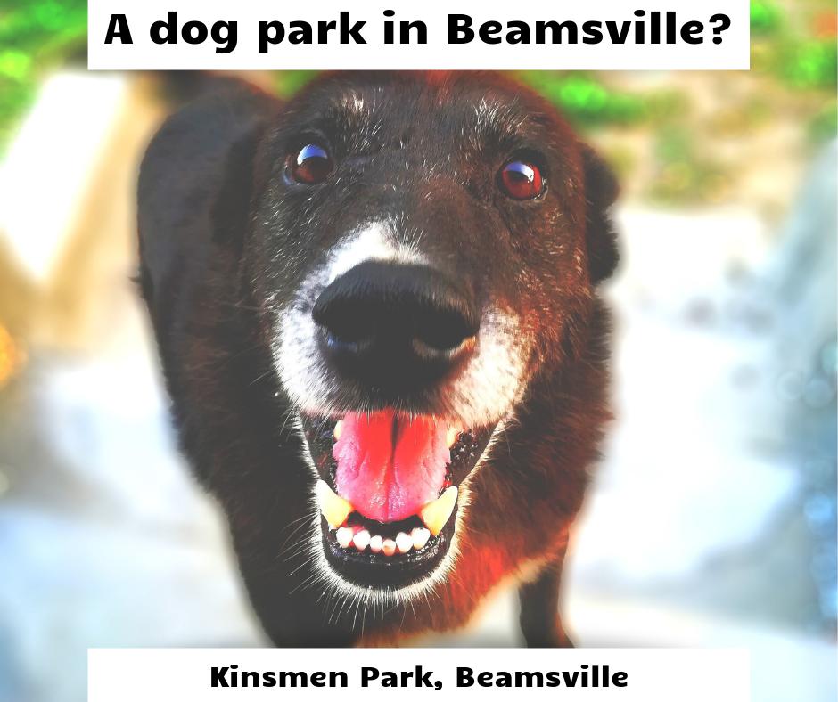 Beamsville's Dog Park