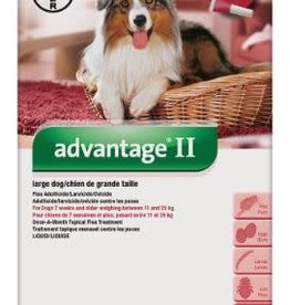 Bayer Advantage II for Dogs 11 - 25kg