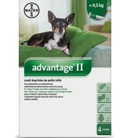 Advantage II Small Dog flea treatment