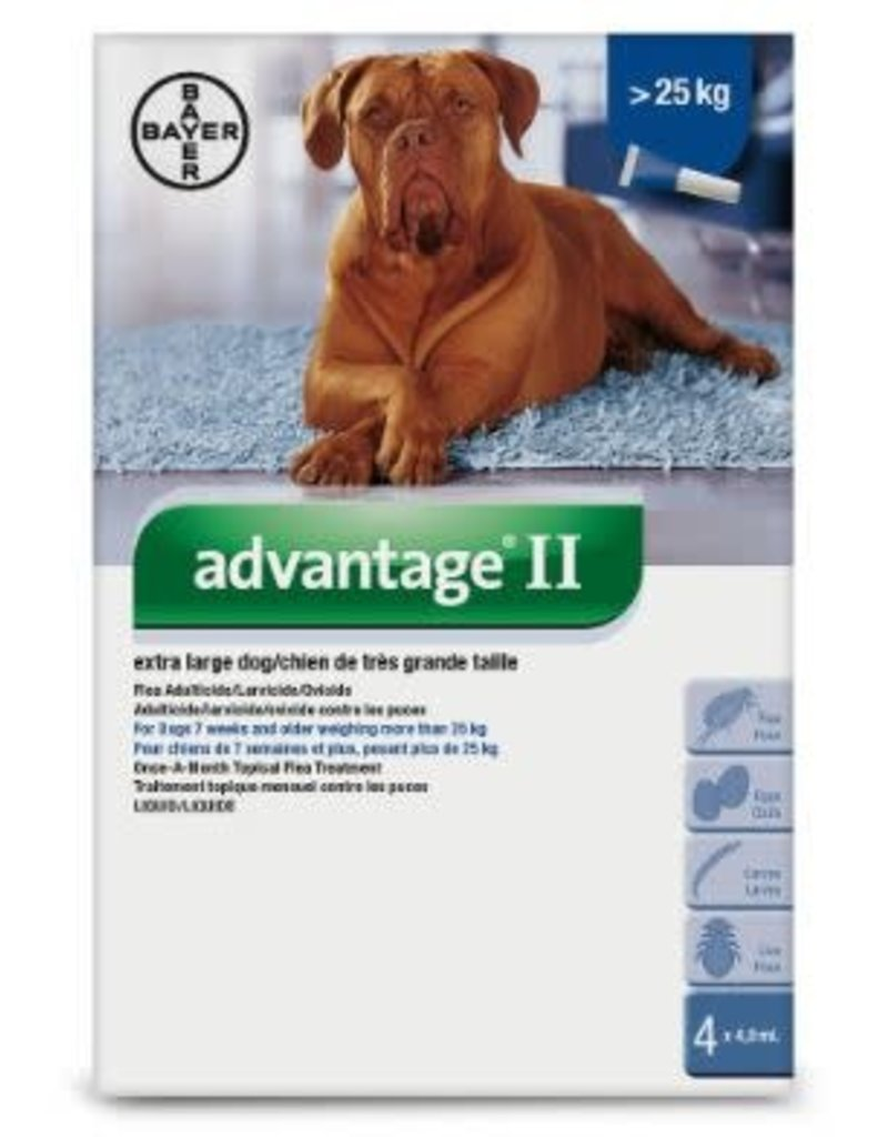 Advantage II ex large dog 25kg Flea Treatment