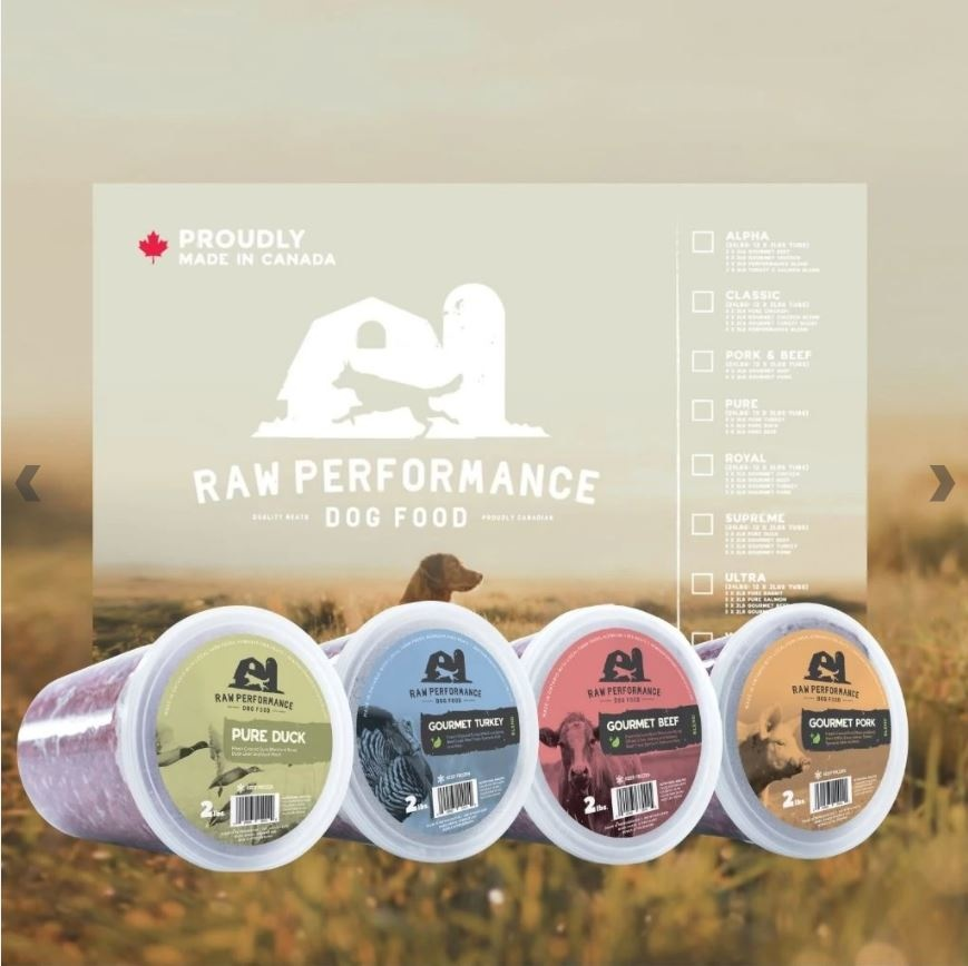 Raw Performance - Lincoln Ontario