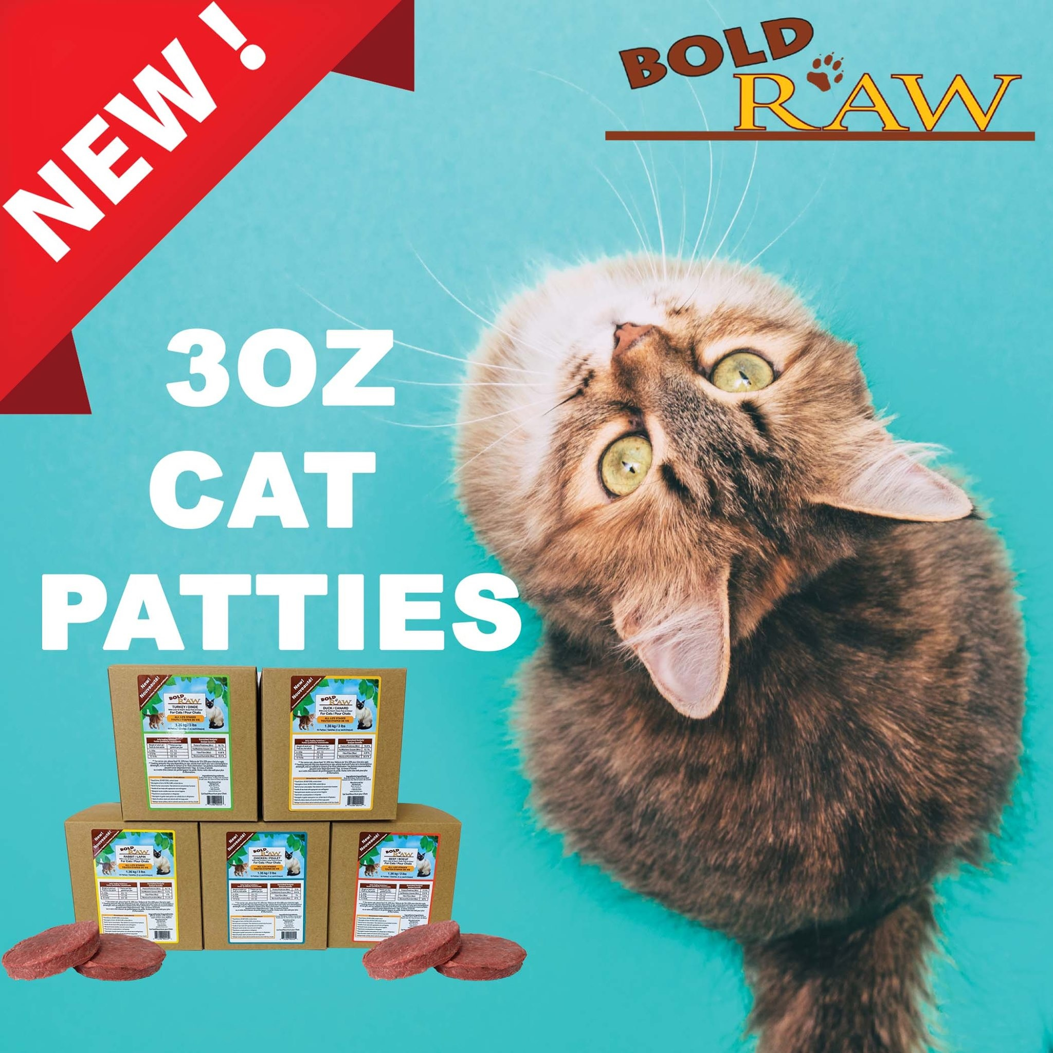 Bold Raw for Cats