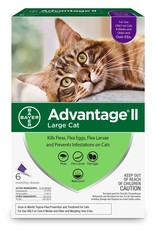 Bayer Advantage Large Cat Over 9lbs