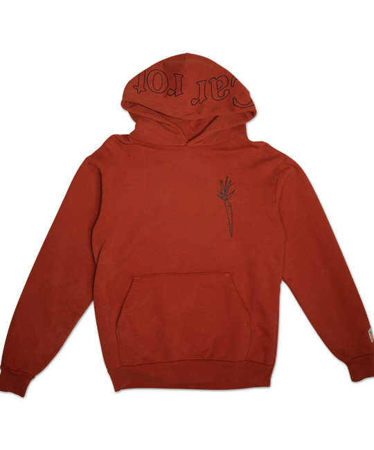 CARROTS CARROTS I DONT CARROT HOODIE