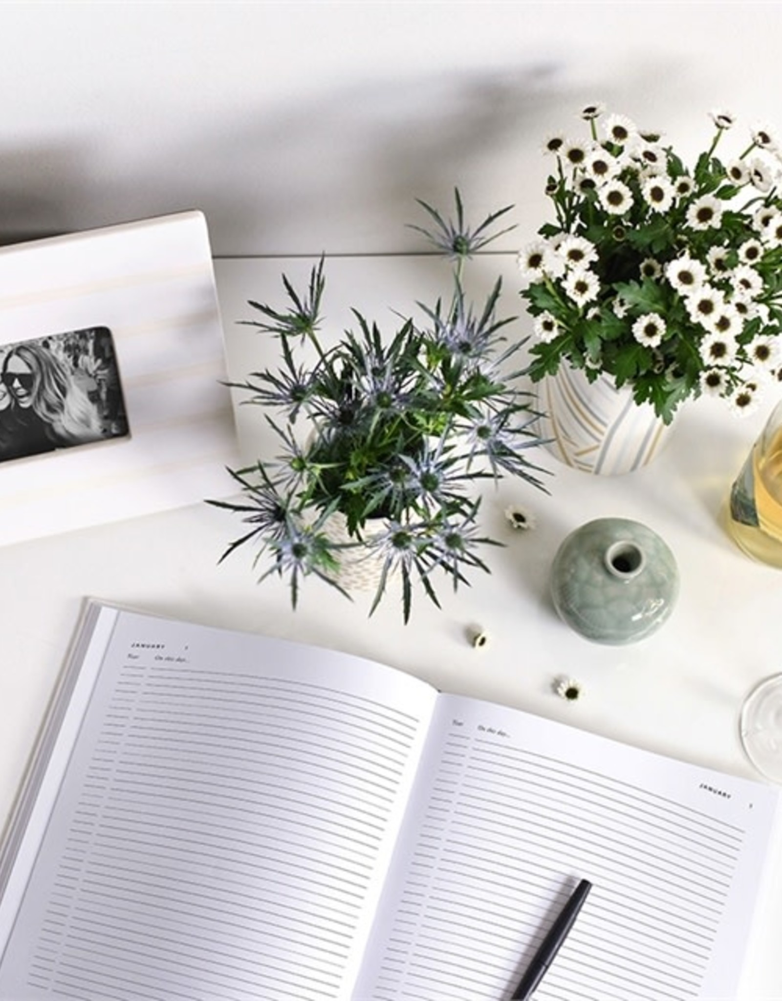 Coton Colors Celebrate Every Day Book