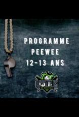 Usine du baseball Programme PeeWee  session automne  2020
