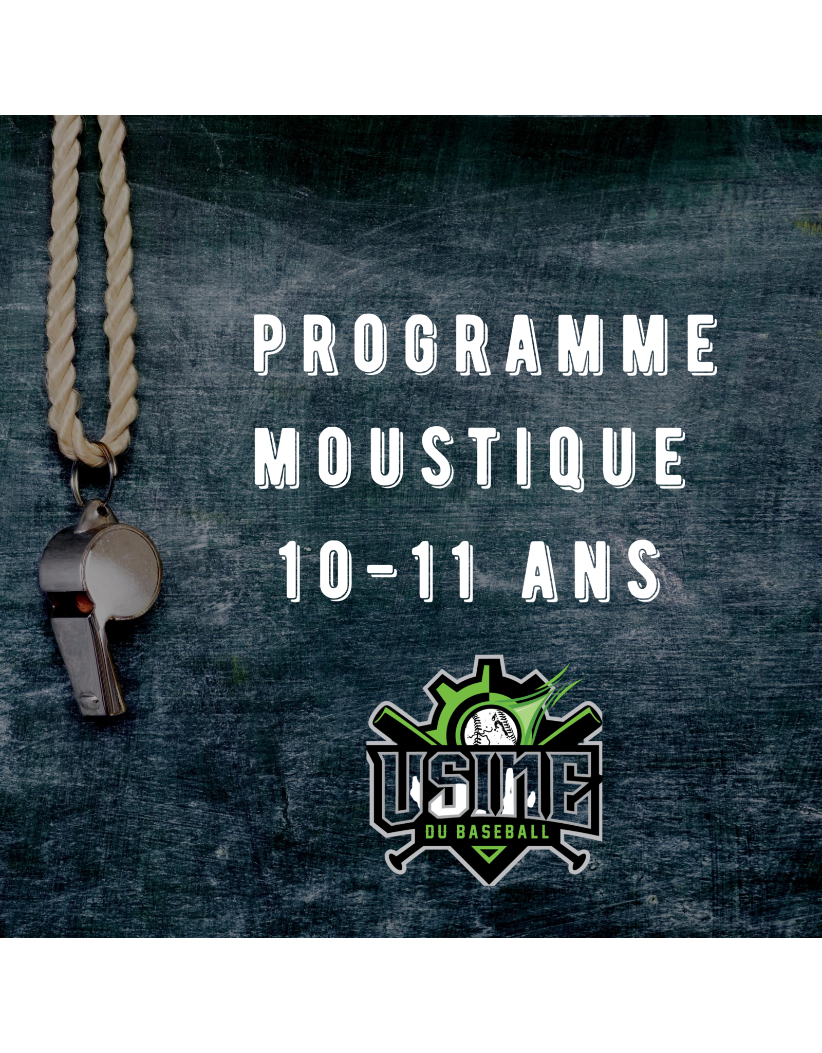 Usine du baseball Moustique Program - Winter baseball 2018-19