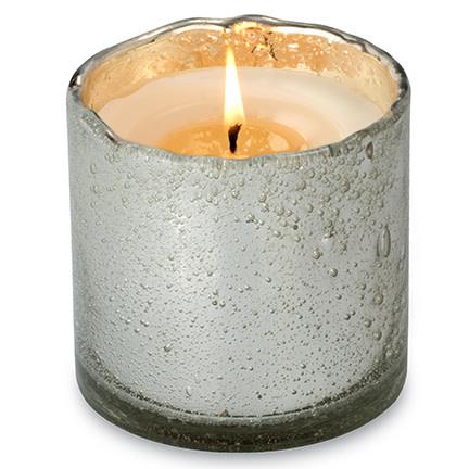 Himalayan Trading Post 13oz Tobacco Bark Silver Artisan Tumbler Candle