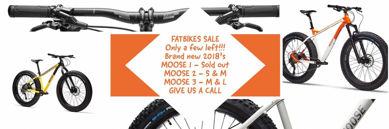 Fat Bikes - Fun all year around!