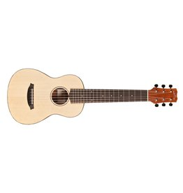Cordoba Cordoba Mini M Travel Acoustic