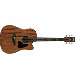 Ibanez AW54CE Artwood Dreanought Acoustic
