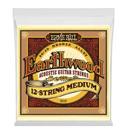 Ernie Ball Ernie Ball Earthwood 12 String Medium 11-28